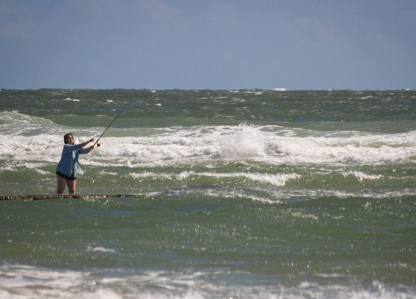 salt water baits