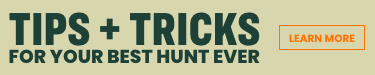 get expert tips on hunting