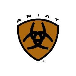 Men's Ariat Work Boots